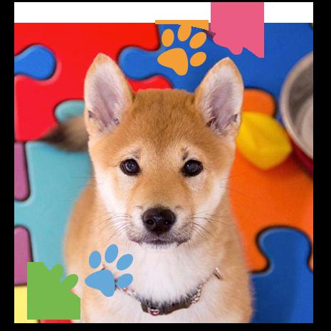 puppies-02-20